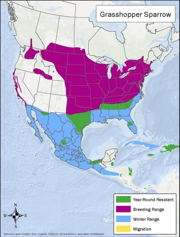 Grasshopper Sparrow range map