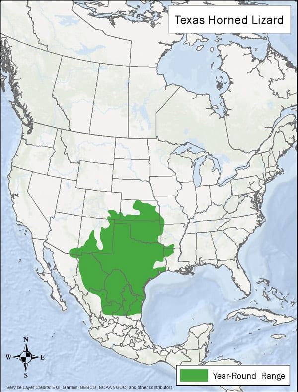 Texas Horned Lizard range map