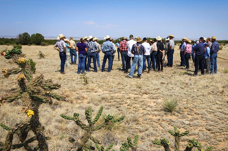 Group of ranchers