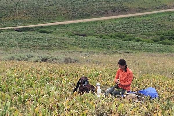 Soil texture in field