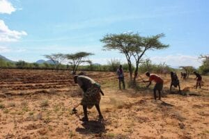 Workers at Lewa Conservancy