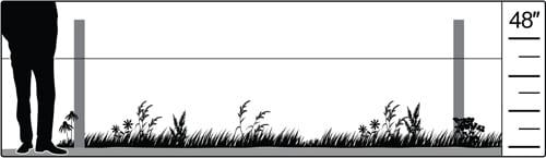 Habitat illustration: shortgrass prairie
