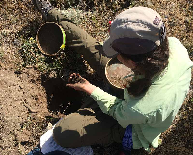 Woman conducting soil survey in the US