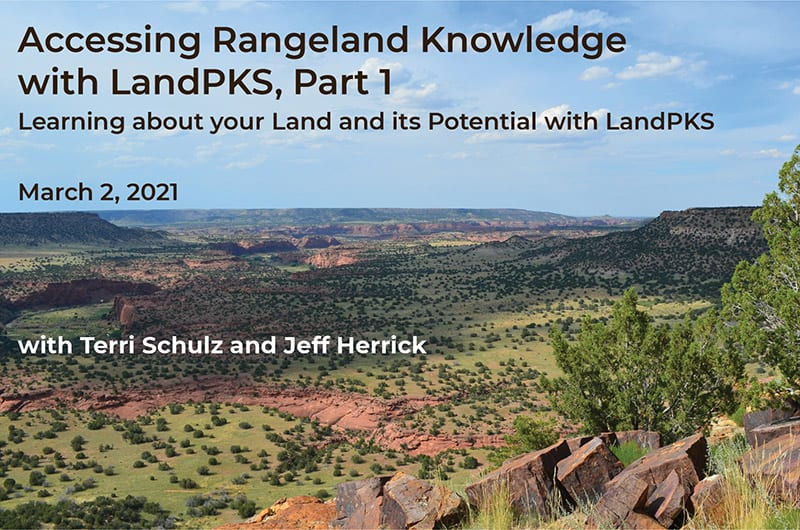 webinar title slide with desert landscape