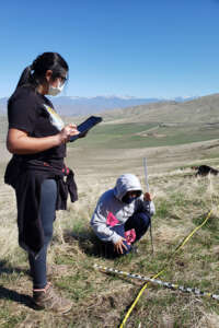 students collecting vegetation and land cover data